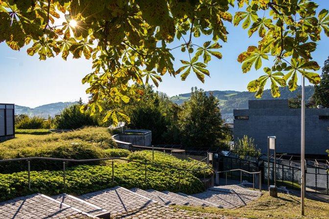 Treppe am Campus zum B-Geäude bei Sonnenschein im Frühsommer, Blick unter einer Kastanie hervormit blauem Himmel und Blick in die Ferne auf Hügelkamm